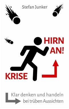 Krise - Hirn an (eBook, ePUB)
