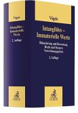 Intangibles - Immaterielle Werte