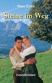 Steine im Weg (eBook, ePUB)