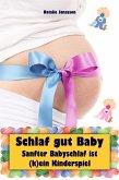 Schlaf gut Baby (eBook, ePUB)