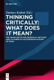 Thinking Critically: What Does It Mean? (eBook, ePUB)