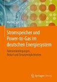 Stromspeicher und Power-to-Gas im deutschen Energiesystem (eBook, PDF)