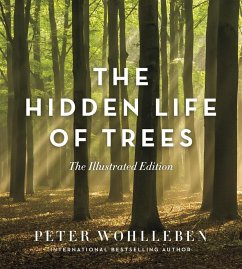 The Hidden Life of Trees: The Illustrated Edition - Wohlleben, Rae