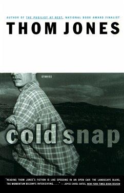 Cold Snap (eBook, ePUB) - Jones, Thom