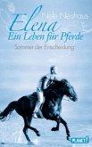 Sommer der Entscheidung / Elena - Ein Leben für Pferde Bd.2 (Mängelexemplar)
