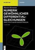Nichtlineare Randwertprobleme (eBook, PDF)