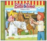 Wildgänse-Alarm / Bibi & Tina Bd.89 (1 Audio-CD)