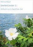 SeelenLieder 2 (eBook, ePUB)