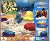 Super Sand Sea Life