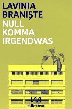 Null Komma Irgendwas (eBook, ePUB) - Brani¿te, Lavinia