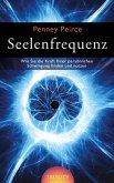 Seelenfrequenz (eBook, ePUB)