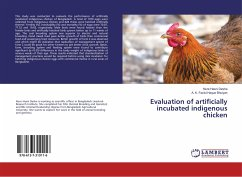 Evaluation of artificially incubated indigenous chicken