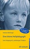 Eine kleine Heilpädagogik (eBook, PDF)