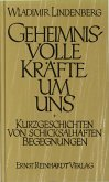 Geheimnisvolle Kräfte um uns (eBook, PDF)