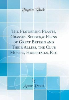 The Flowering Plants, Grasses, Sedges,& Ferns of Great Britain and Their Allies, the Club Mosses, Horsetails, Etc (Classic Reprint)