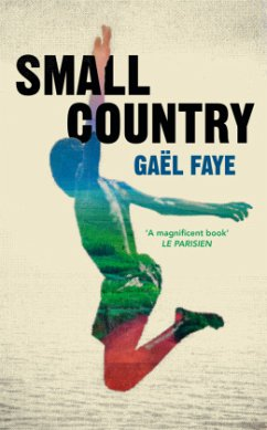 Small Country - Faye, Gaël