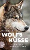 Wolfsküsse