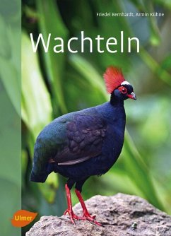 Wachteln (eBook, ePUB) - Bernhardt, Friedel; Kühne, Armin