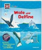Wale und Delfine / Was ist was junior Bd.26