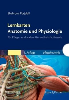 Lernkarten Anatomie und Physiologie