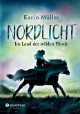 Nordlicht, Band 01 (eBook, ePUB)