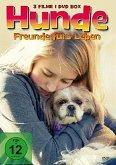 Hunde - Freunde fürs Leben
