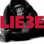 Hagen Rether, Liebe 3 (MP3-Download)