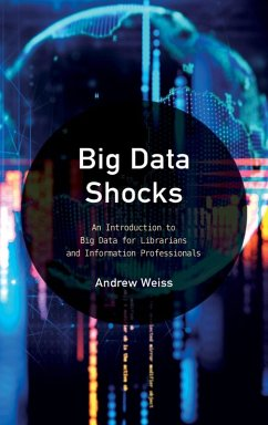 Big Data Shocks (eBook, ePUB)