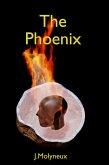 The Phoenix (Blank Magic, #1) (eBook, ePUB)