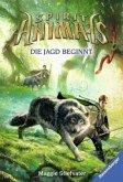 Die Jagd beginnt / Spirit Animals Bd.2
