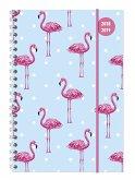Collegetimer A5 Flamingo 2018/2019 - Ringbuch