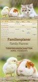 Familienplaner Tierfreundschaften 2019