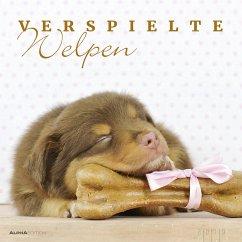 Verspielte Welpen - Puppies 2019