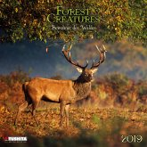 Forest Creatures 2019 What a Wonderful World