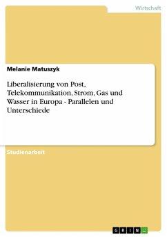 Liberalisierung von Post, Telekommunikation, Strom, Gas und Wasser in Europa - Parallelen und Unterschiede (eBook, ePUB)