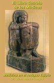 El Libro Secreto de los Médicos: Medicina en el Antiguo Egipto (eBook, ePUB)