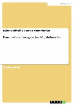Erneuerbare Energien im 20. Jahrhundert (eBook, ePUB)