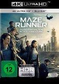 Maze Runner - Die Auserwählten in der Todeszone (4K Ultra HD + Blu-ray)