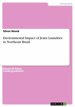 Environmental Impact of Jeans Laundries in Northeast Brazil (eBook, ePUB)