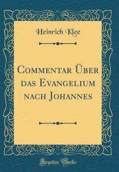 Commentar Über das Evangelium nach Johannes (Classic Reprint)