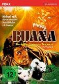 Buana - Die weißen Löwen von Timbavati Digital Remastered