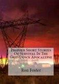 Prepper Short Stories Of Survival In The Grid Down Apocalypse (eBook, ePUB)