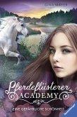 Eine gefährliche Schönheit / Pferdeflüsterer Academy Bd.3 (eBook, ePUB)