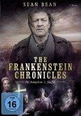The Frankenstein Chronicles - Die komplette 2. Staffel (2 Discs)