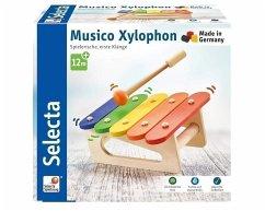 Musico, Xylophon