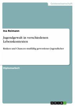 Jugendgewalt in verschiedenen Lebenskontexten (eBook, ePUB)