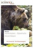 Höhlenbären (eBook, ePUB)