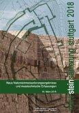 Natursteinsanierung Stuttgart 2018. (eBook, PDF)