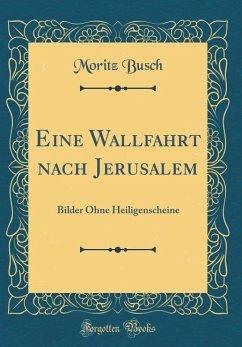 Eine Wallfahrt Nach Jerusalem: Bilder Ohne Heiligenscheine (Classic Reprint)