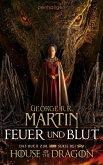 Feuer und Blut Bd.1 (eBook, ePUB)